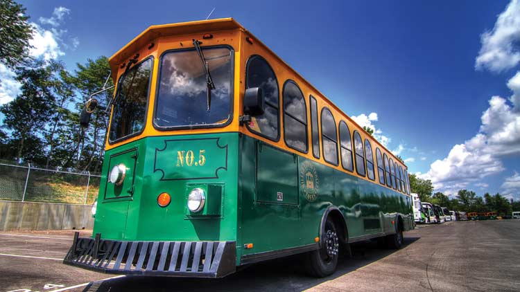 Miller Transportation Bus Service Inc. 2
