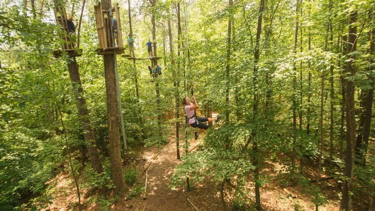 Go Ape Treetop Adventure 12