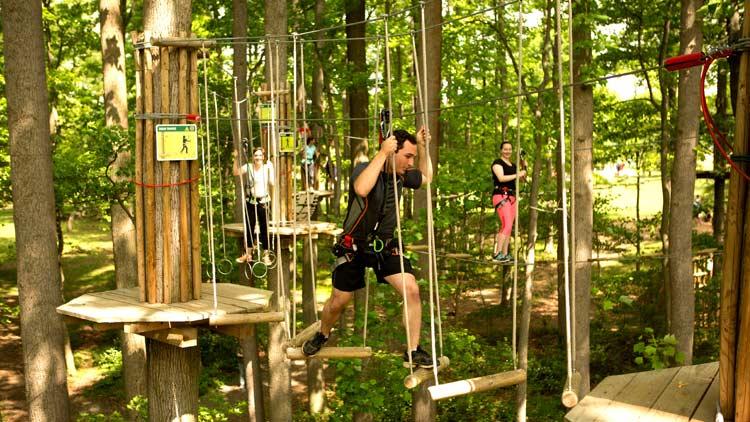 Go Ape Treetop Adventure 18