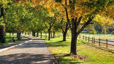 Province Park