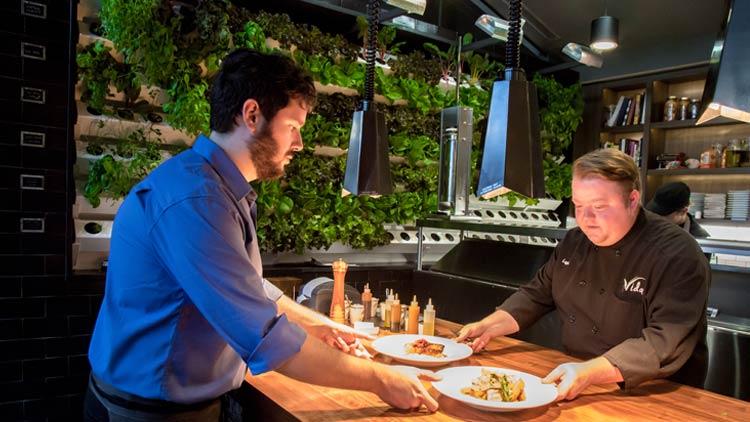 Vida Restaurant 4
