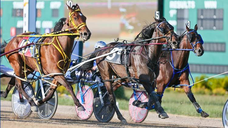 Hoosier Park Racing & Casino 12