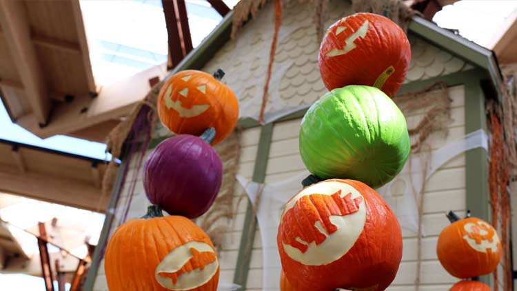 Halloween ZooBoo presented by Central Indiana Honda Dealers