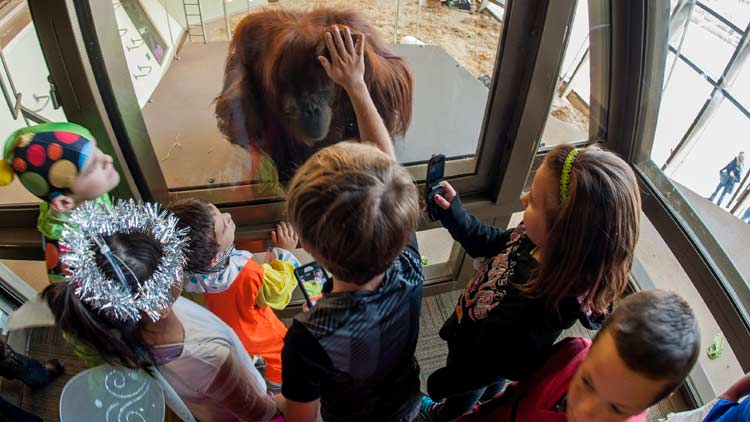 Halloween ZooBoo presented by Central Indiana Honda Dealers 2