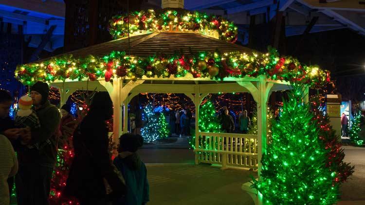 Christmas at the Zoo 23
