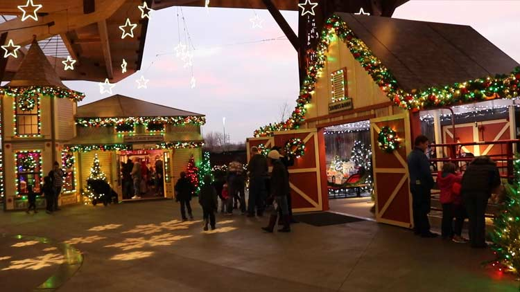 Christmas at the Zoo 30
