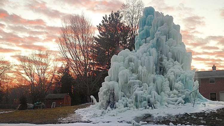 Veal's Ice Tree