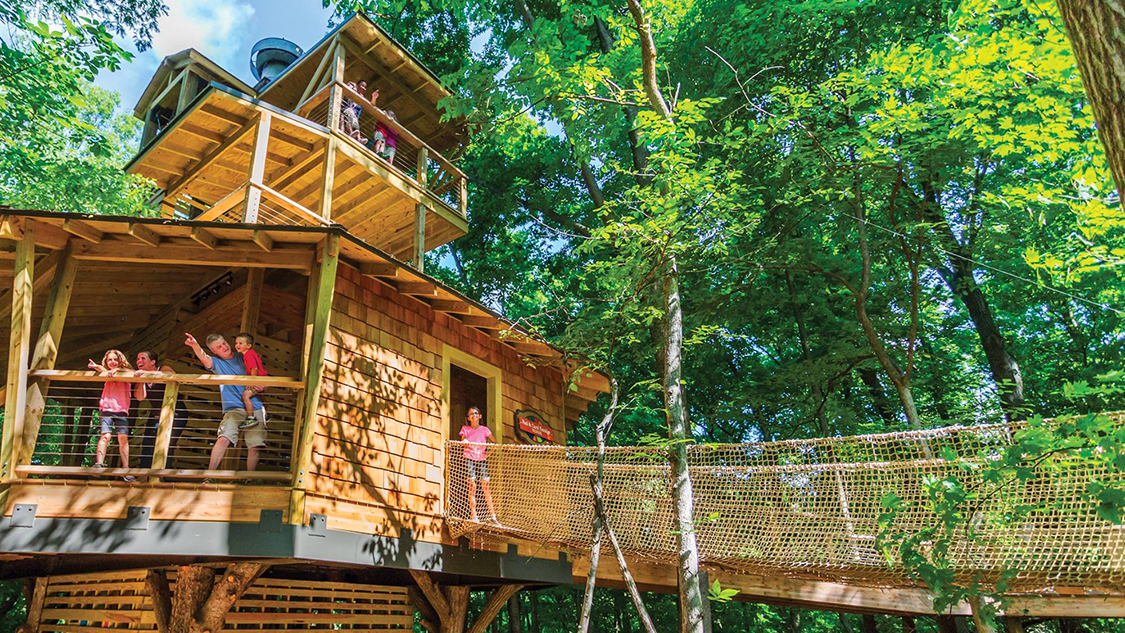 5 nature lovers tree top