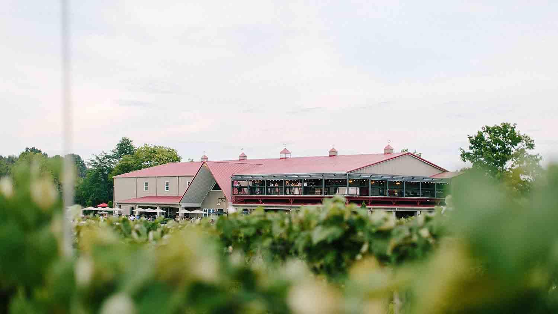 Daniel's Family Vineyard & Winery 13