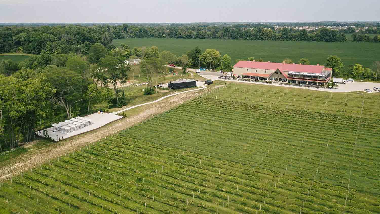Daniel's Family Vineyard & Winery 16