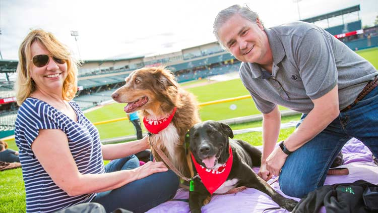 Bark in the Park with the Indianapolis Indians 5