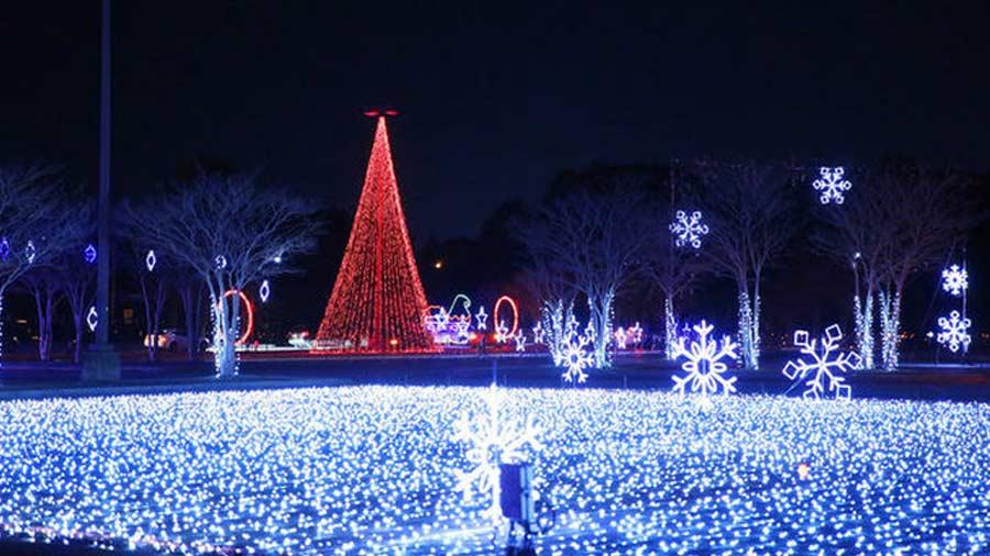 Christmas Nights of Lights 3