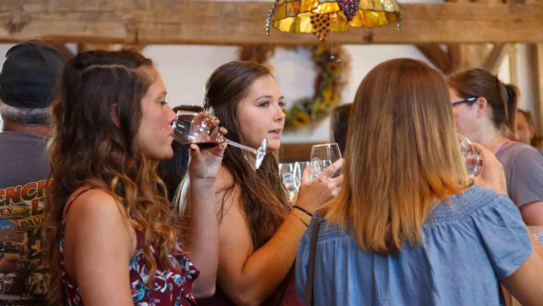 Mallow Run Winery 4