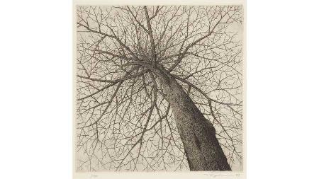 Vibrant Line - Works on Paper by Tanaka, Shinoda, and Tawara