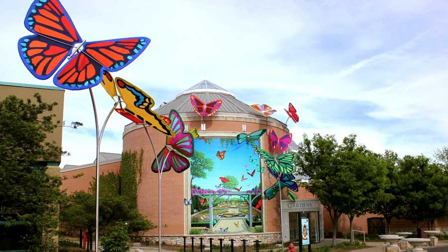 Butterfly Kaleidoscope 15