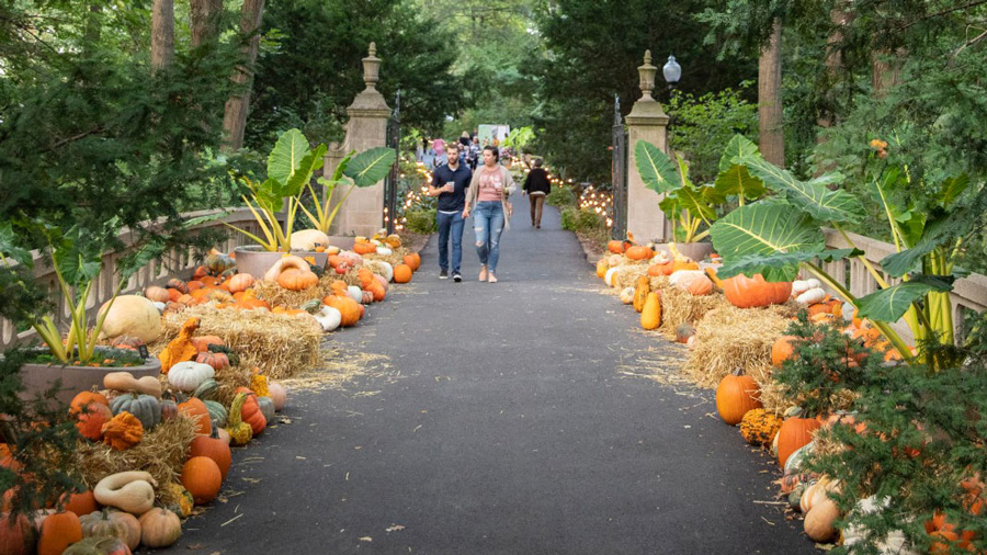 Fall Festivals in Indianapolis